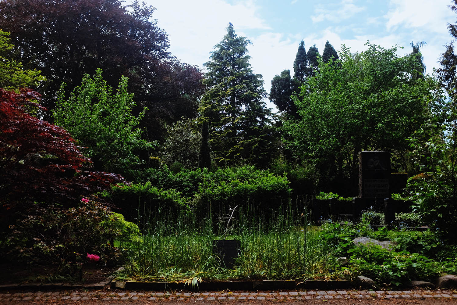 Assistens-Cemitery-4